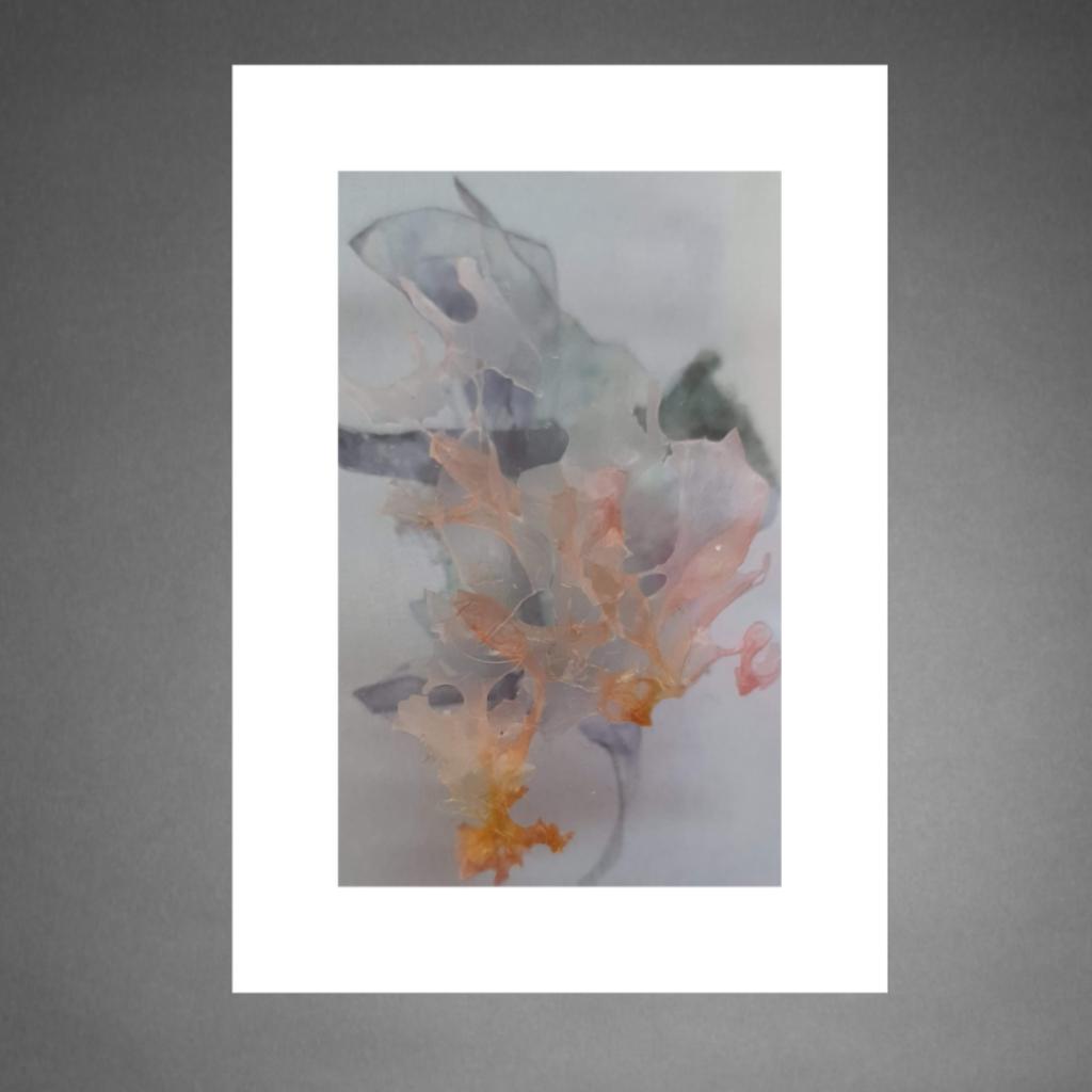 Fragile 23 Marieke Matthijs Uit Het Gareel