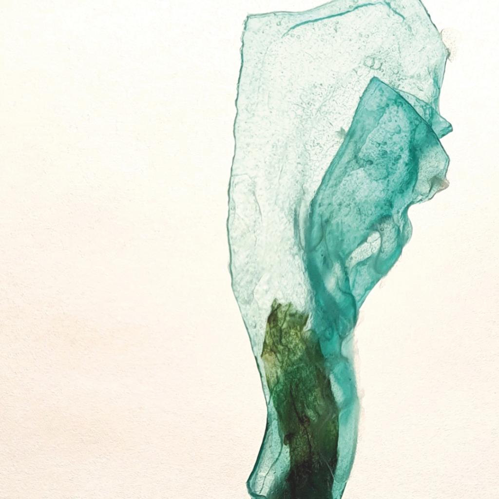 Fragile 14 Marieke Matthijs Uit Het Gareel